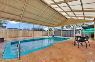 Picture of 20 Montacute Street, Elizabeth Downs SA 5113