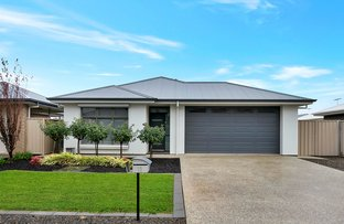 Picture of 11 Moore Avenue, Nuriootpa SA 5355