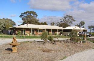 Picture of 599 Echuca West School Road, Echuca West VIC 3564