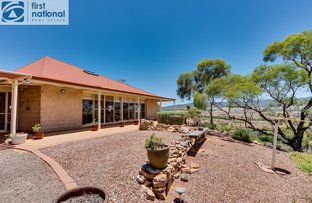 Picture of 130 Grandview Drive, Quorn SA 5433