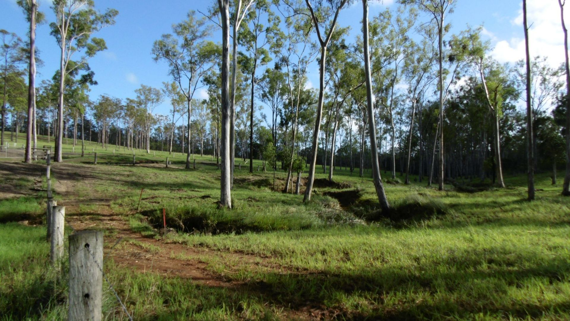253 Hodges Road, Cordalba QLD 4660, Image 2