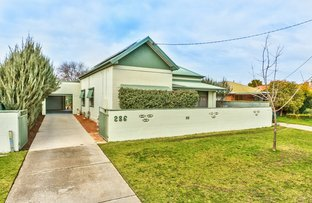 Picture of 286 Olive Street, Albury NSW 2640
