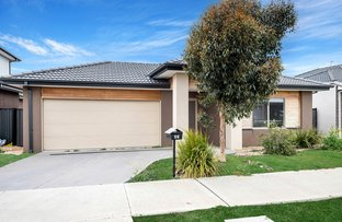 Picture of 61 Bluebell Drive, Craigieburn VIC 3064