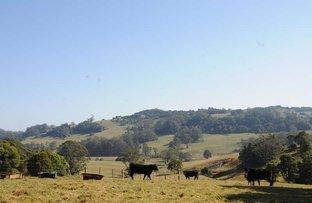 Picture of 4980 Illawarra Highway, Robertson NSW 2577