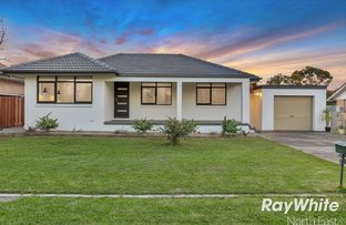 Picture of 20 Naretha Street, Holden Hill SA 5088