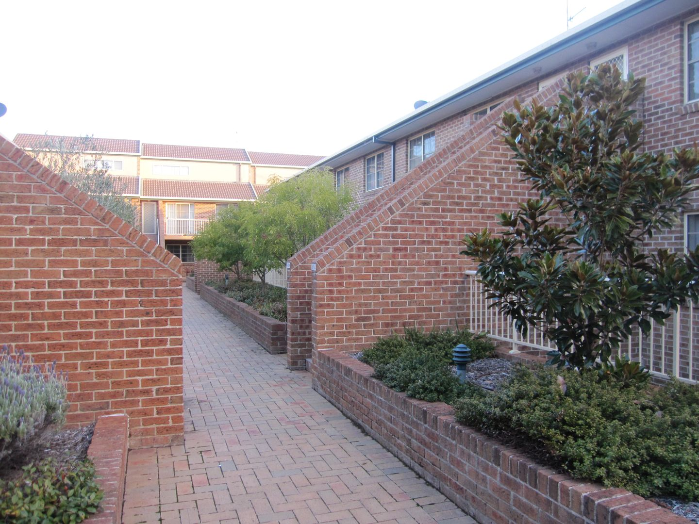 8/1 Waddell Place, Curtin ACT 2605, Image 0