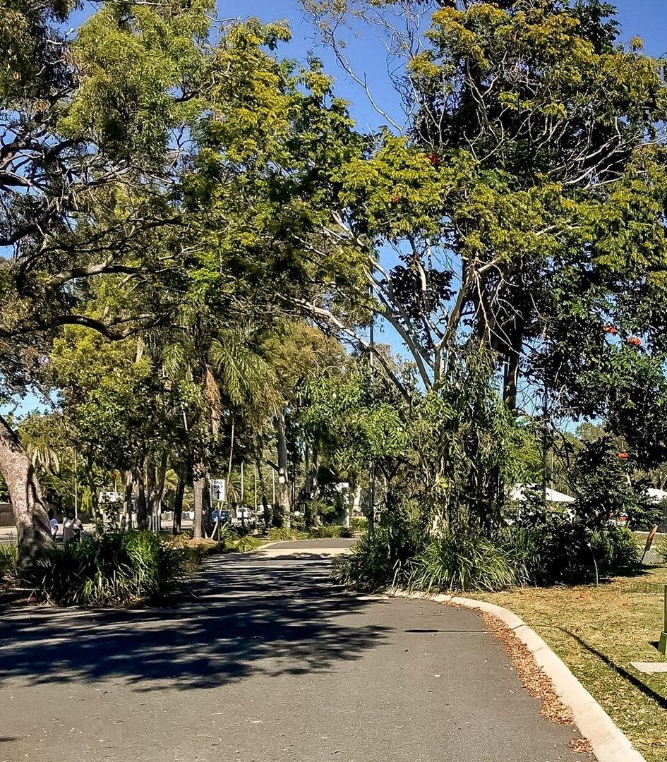 13 Miner Lane, Andergrove QLD 4740, Image 1