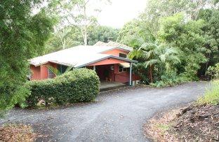 337 Clothiers Creek Road, Nunderi NSW 2484