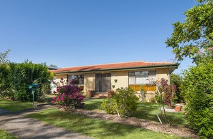 Picture of 43 BARBARALLA DRIVE, Springwood QLD 4127