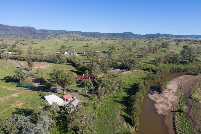 Picture of 302 Caroda Road, BINGARA NSW 2404