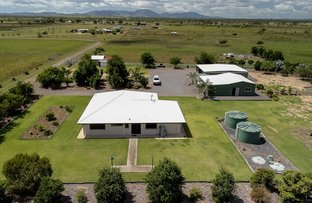 Picture of 1203 Ridgelands Road, Alton Downs QLD 4702