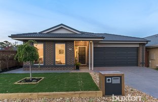 14 Wurrook Circuit, North Geelong VIC 3215