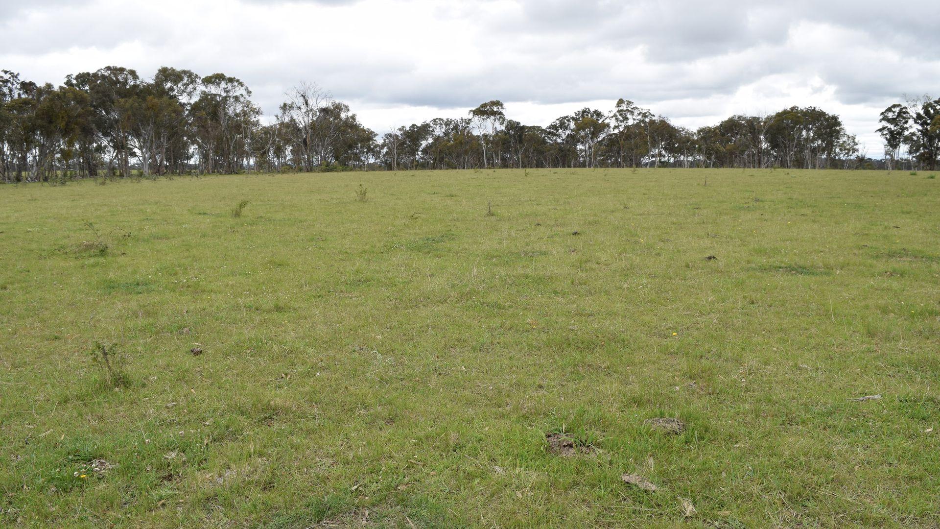 460 Donald Road, Armidale NSW 2350, Image 1