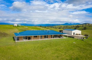Picture of 1060 Buckajo Rd, Buckajo NSW 2550
