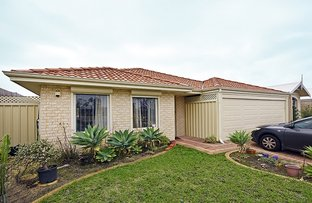 Picture of 6 Cluny Way, Ellenbrook WA 6069