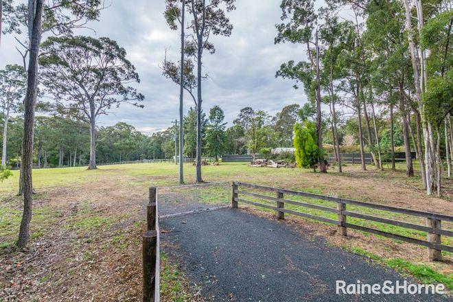 Picture of 1275 Illaroo Road, TAPITALLEE NSW 2540