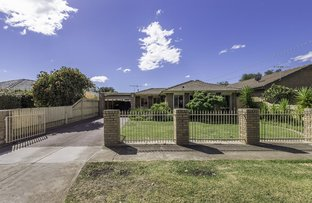 Picture of 6 Kurrajong  Crescent, Melton South VIC 3338