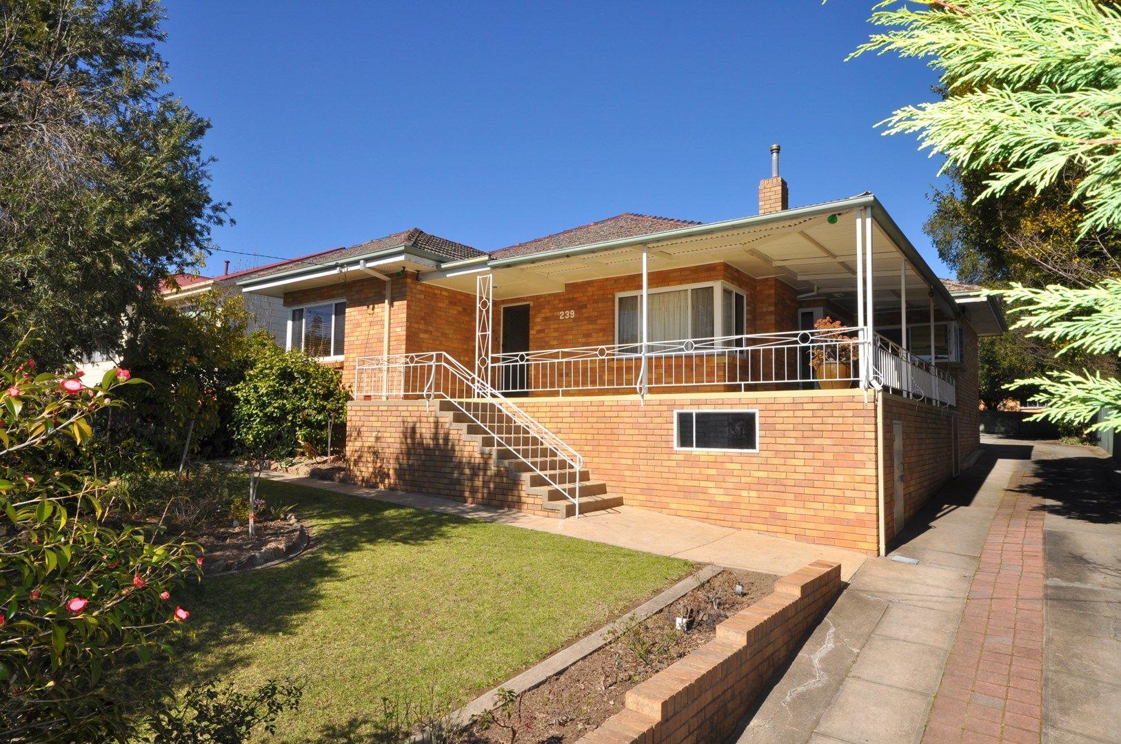 239 Walsh Street, East Albury NSW 2640, Image 0