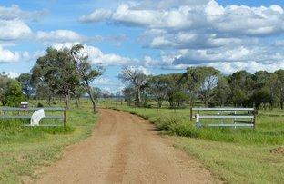 Picture of 5 Kennedy Development Road, Hughenden QLD 4821