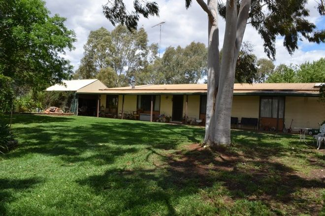 Picture of 19a Tyson Road, WARBURN NSW 2680