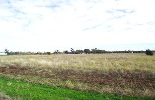 3/112 Tarrawingee Road, Moree NSW 2400