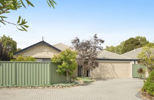 Picture of 1/3 Curno Place, West Busselton WA 6280