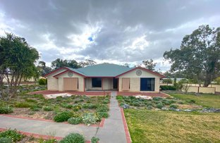 Picture of 27-29 Diery Street, Rosenthal Heights QLD 4370