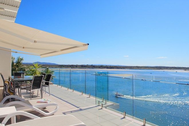 Picture of 22/4 Quamby Place, NOOSA HEADS QLD 4567