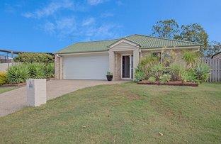 Picture of 19 Amberwood Drive, Upper Coomera QLD 4209