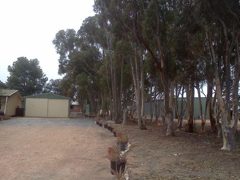 734 Ford Road, Pinery SA 5460, Image 2