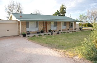 Picture of 27 Coats Crescent, Waikerie SA 5330