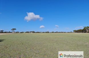 Picture of Lot 10672 Yarling Brook Road, Wickepin WA 6370