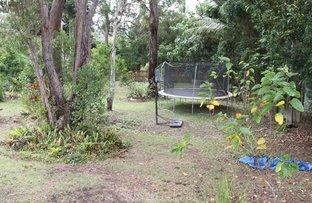 Picture of 8A CLOHESY, Koah QLD 4881
