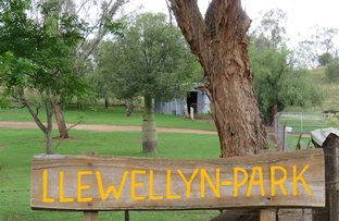 Picture of Llewellyn Park Glen Barra Road, Manilla NSW 2346