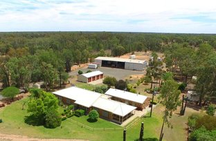 Picture of 690 Yarrie Lake Road, Narrabri NSW 2390