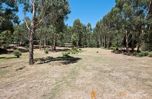 Picture of 141 Silver Creek Road, Flowerdale VIC 3717
