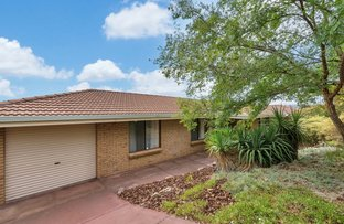 Picture of 13 Galveston Place, Wynn Vale SA 5127