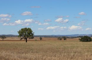 Picture of Cnr Old Dubbo and Warrie Road, Dubbo NSW 2830