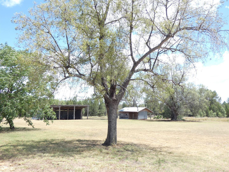 64 Racecourse Road, Chinchilla QLD 4413, Image 2