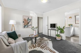 Picture of 13/707 Barkly Street, West Footscray VIC 3012