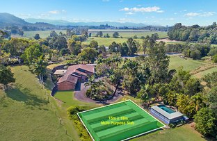 Picture of 141 North Arm Road, Murwillumbah NSW 2484