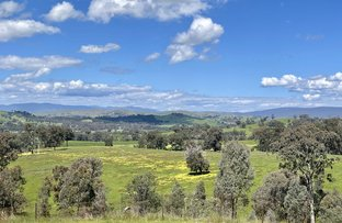 Picture of 45 Range Road, Yarck VIC 3719