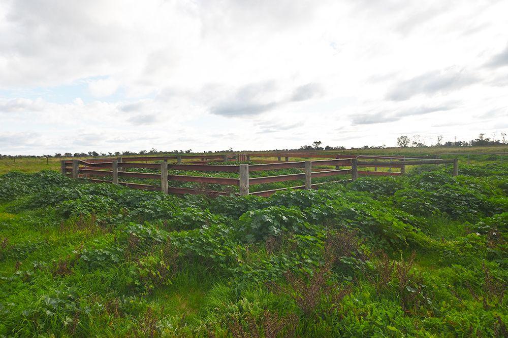 2, 3385 Midland Highway, Stanhope VIC 3623, Image 1