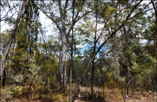Picture of Lot 37 Pine Road, Millmerran Woods QLD 4357
