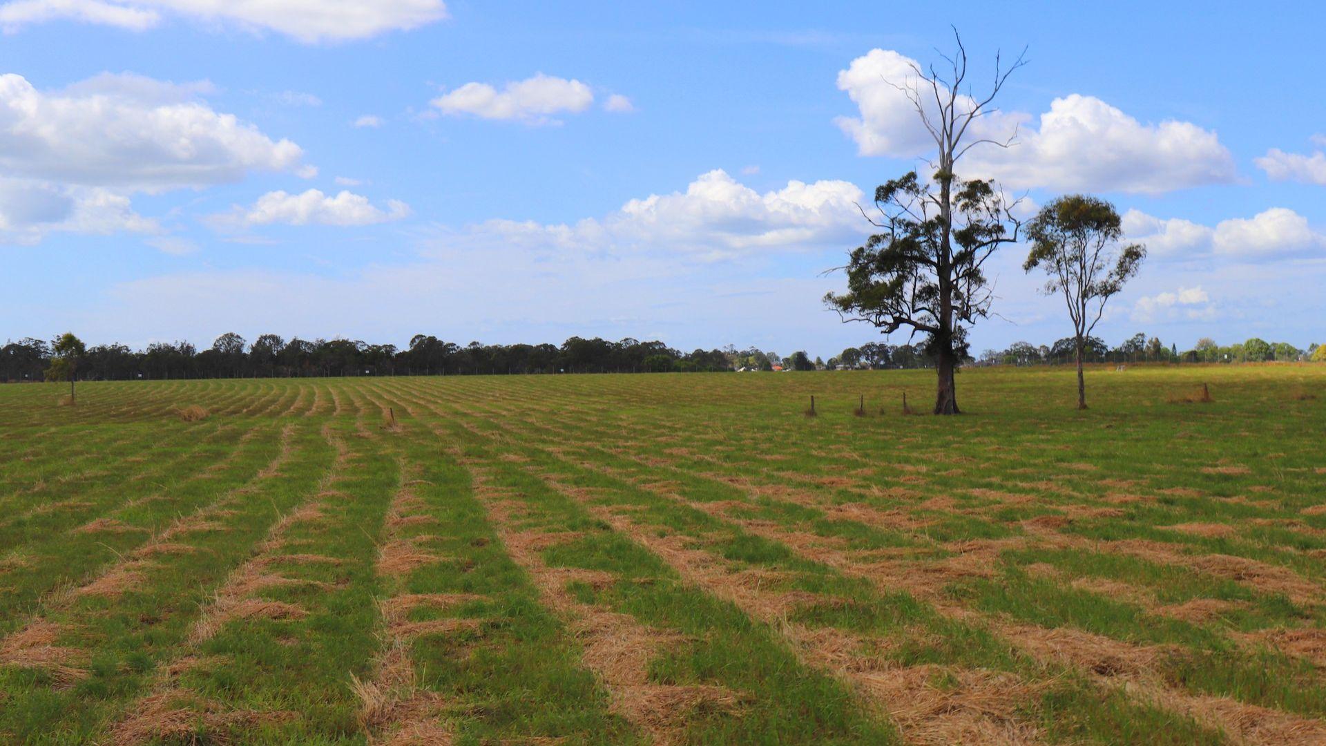 100 Old Lansdowne Road, Cundletown NSW 2430, Image 2