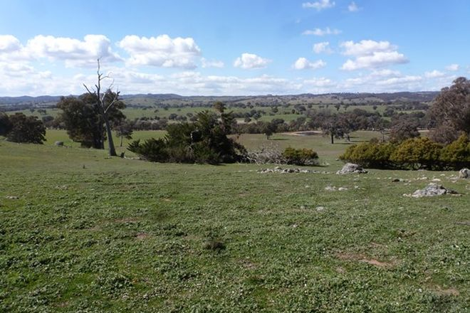 Picture of Lot 1, 3045 Wargeila Rd., RYE PARK NSW 2586