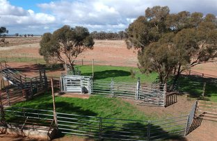 """Picture of . """"KANEMBO"""", West Wyalong NSW 2671"""