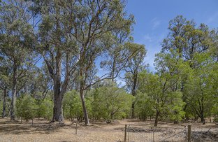 Picture of Lot 134 Rushleigh Road, Reinscourt WA 6280