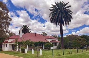 101 Walbundrie  Road, Culcairn NSW 2660