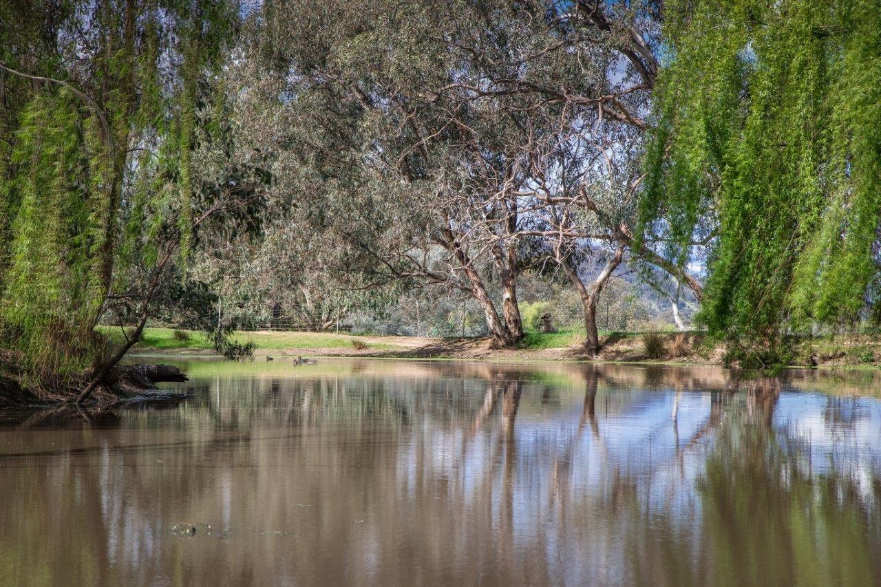 878 Pearsall Street, Hamilton Valley NSW 2641, Image 2